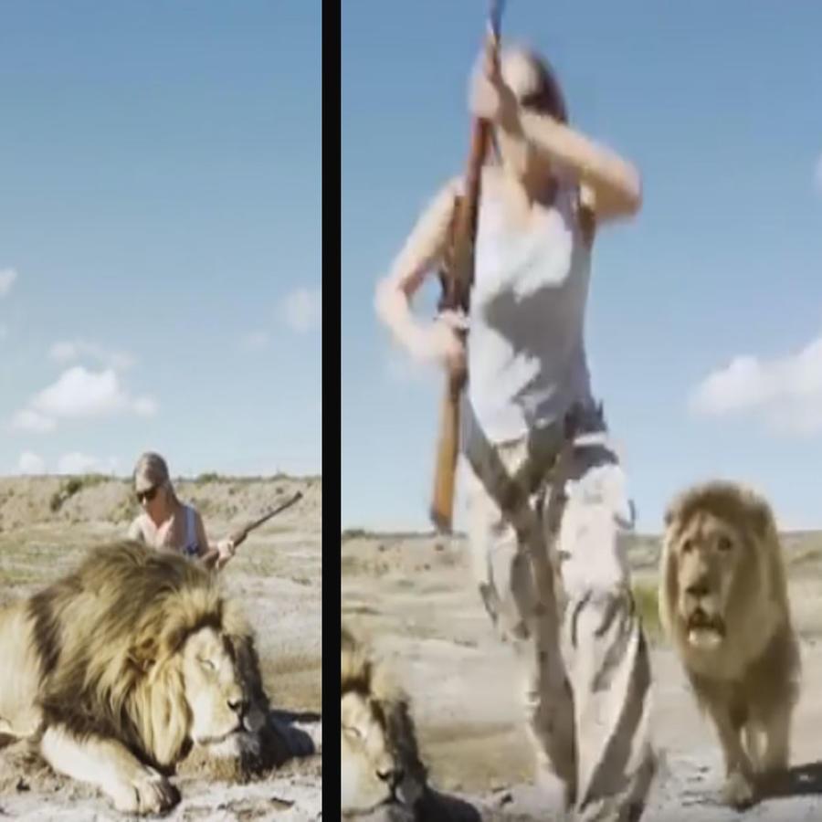 León ataca a unos cazadores qu eposan sobre su compañero muerto