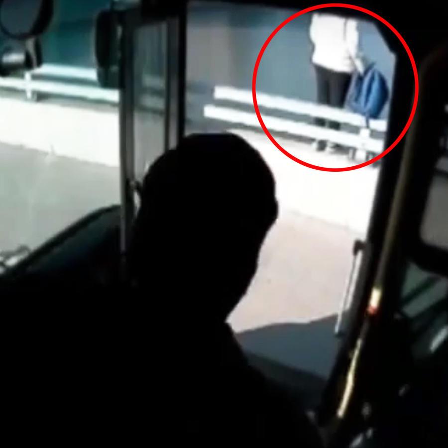 Chofer de autobús y mujer suicida