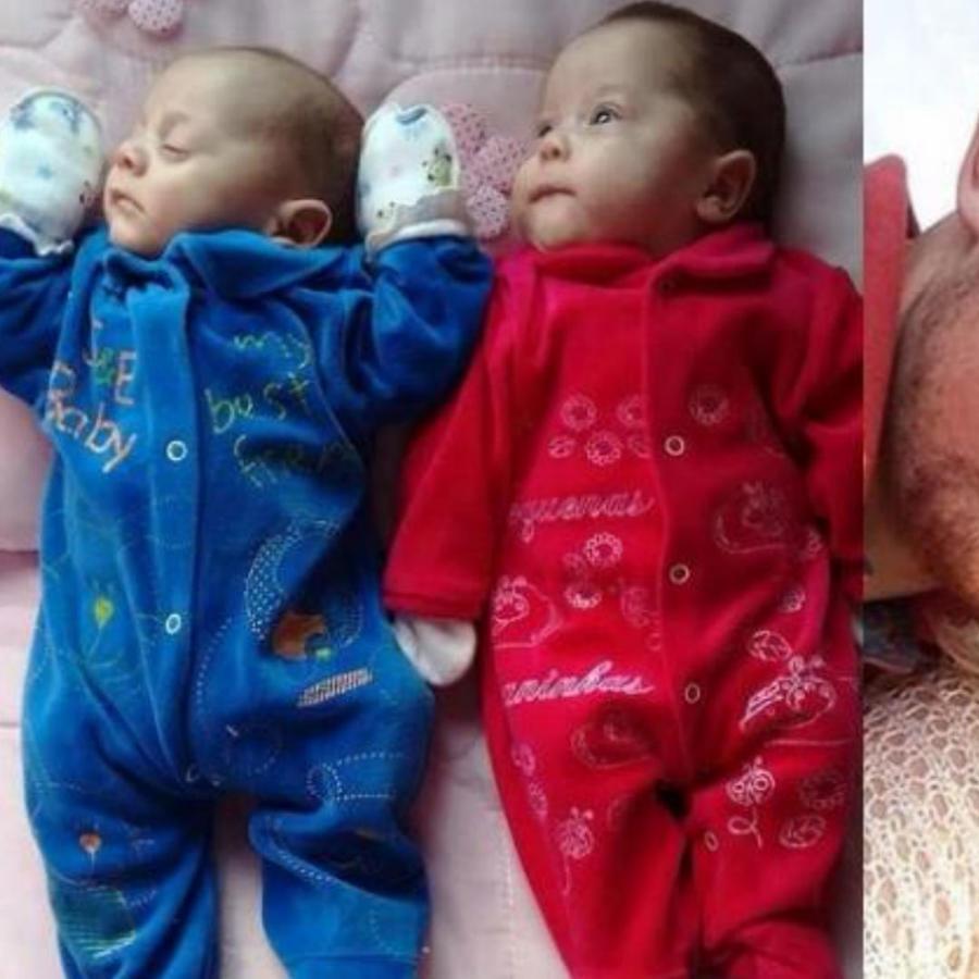 Collage gemelos recién nacidos y sus padres
