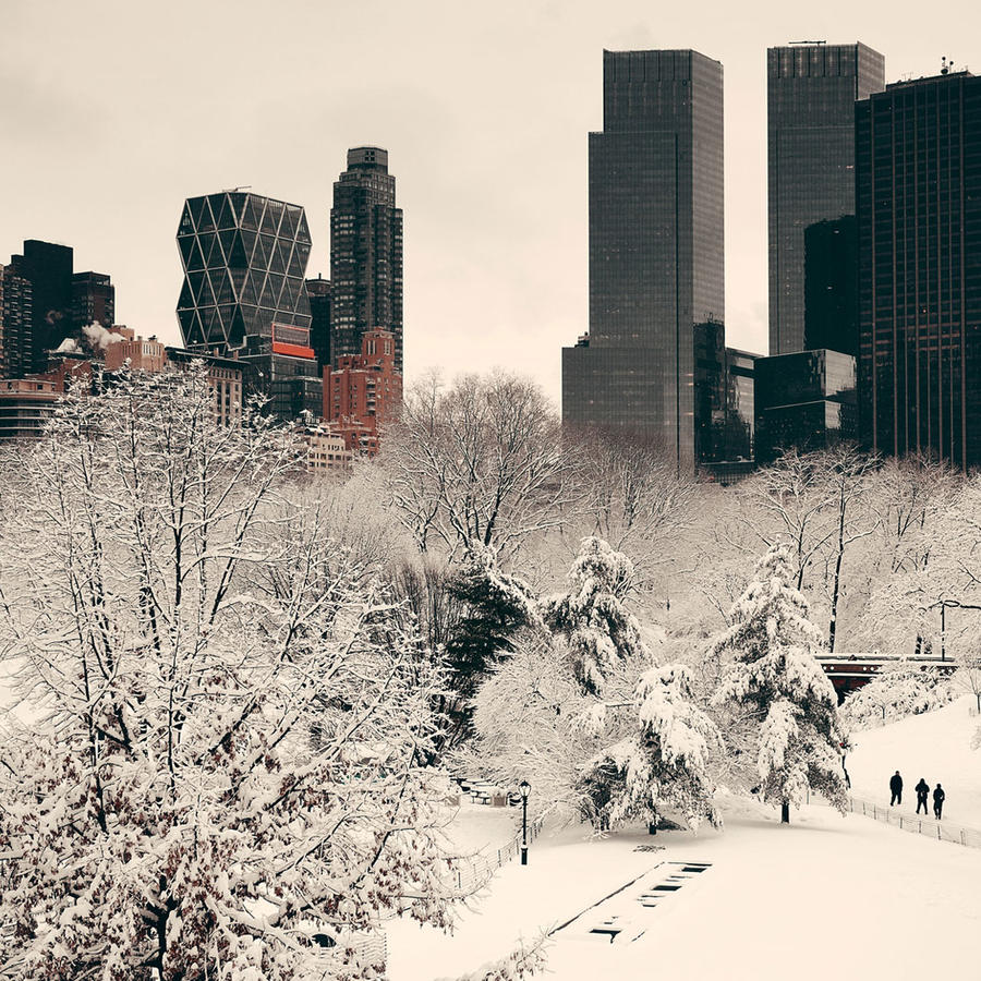Central Park bajo la nieve
