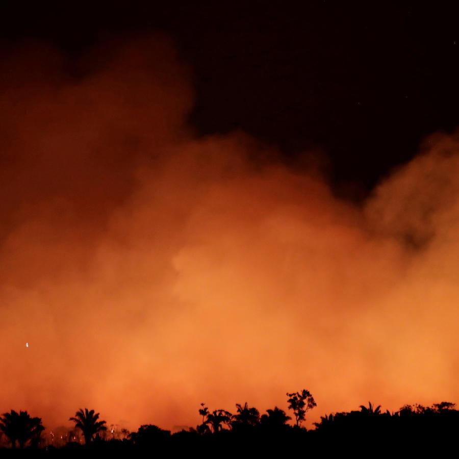 Fuegos en la Amazonia, Brasil