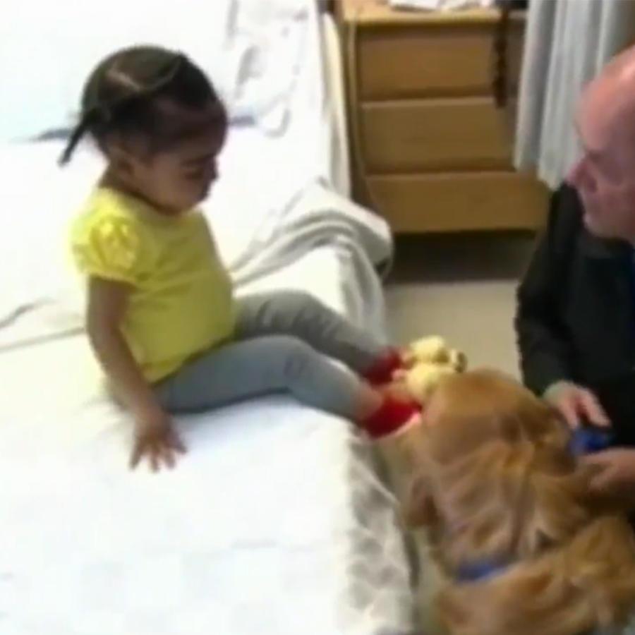 nina con perro en hospital