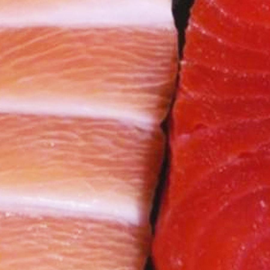 diferencias salmon salvaje y criadero