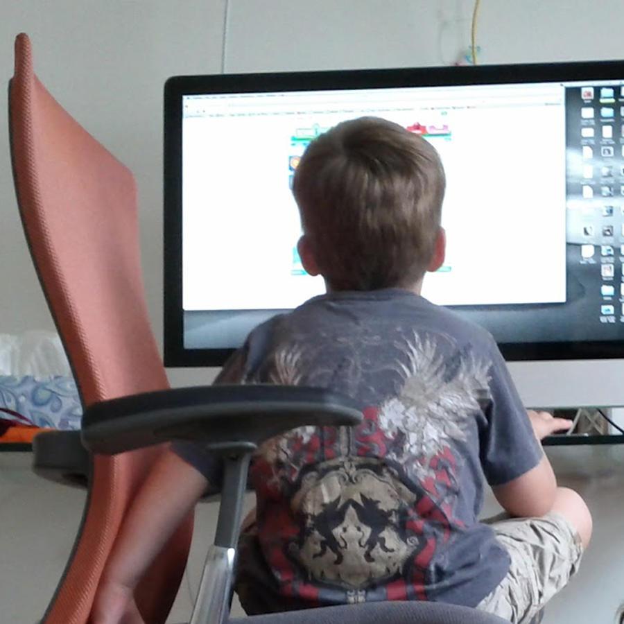 Niño solo en la internet en el computador