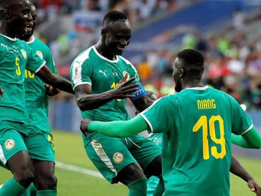 Senegal vs Polonia High Lights