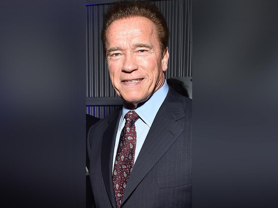 Arnold Schwarzenegger en la 7th Annual Sean Penn & Friends HAITI RISING Gala el 6 de enero de 2018 en California