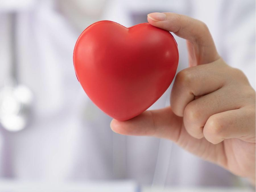 Doctor sosteniendo corazón