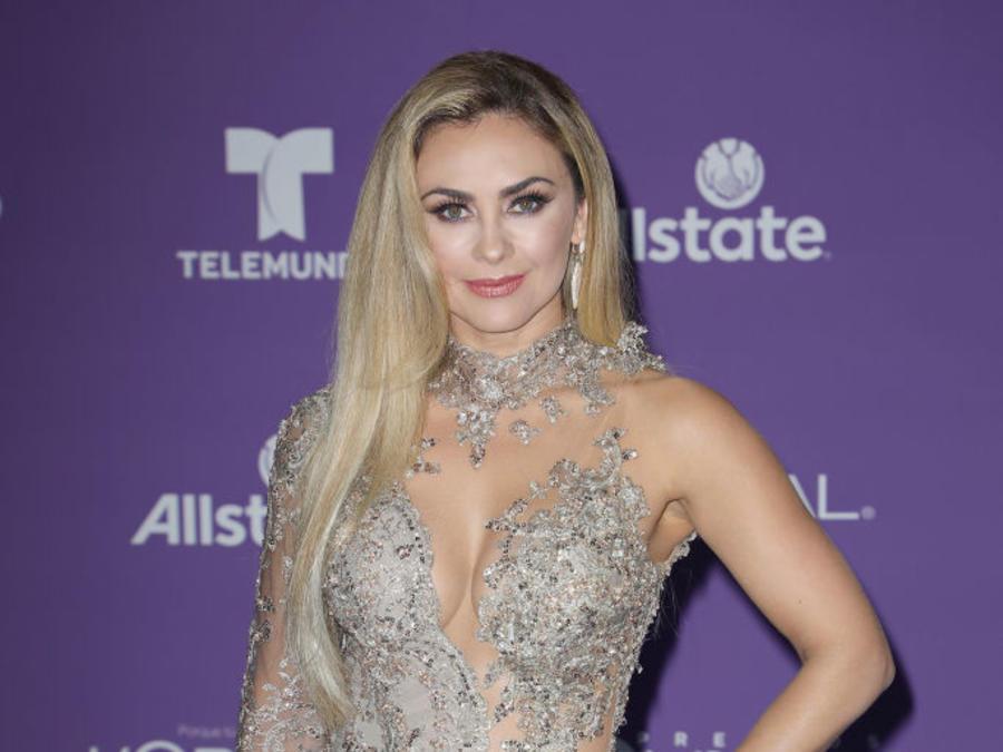 "Aracely Arambula Telemundo's 2017 ""Premios Tu Mundo"" - Arrivals"