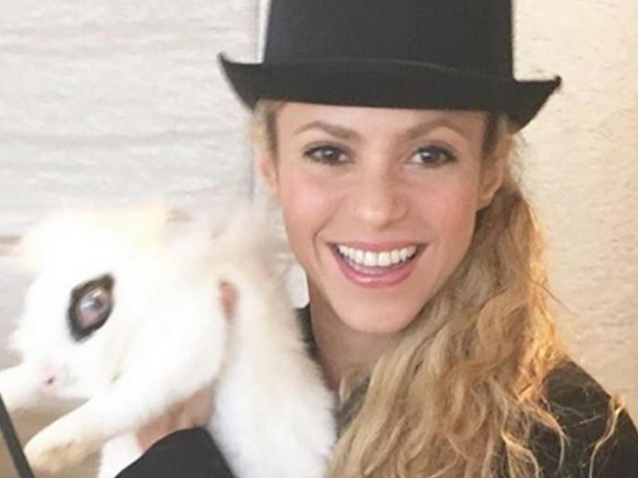 Foto de Shakira y un conejo