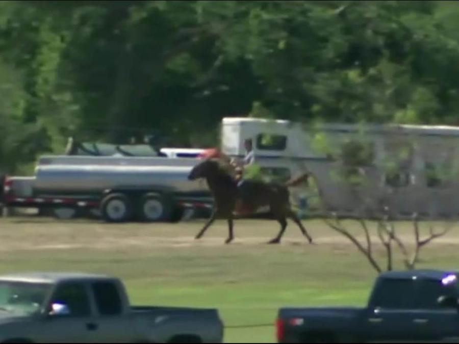 Presidente de la Cámara de Representantes en la frontera a la grupa de un caballo
