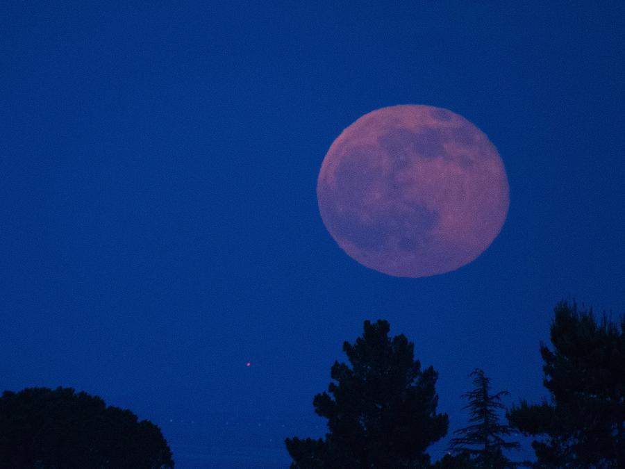 Cielo nocturno con luna llena rosada