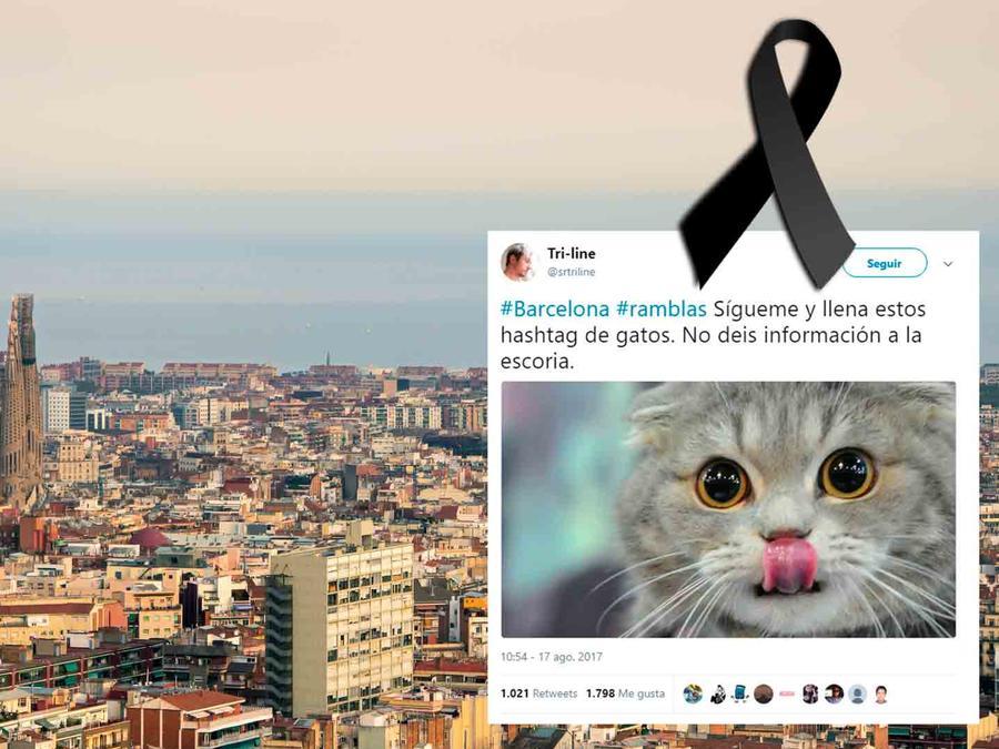 Barcelona ataque terrorista, Twitter y gatos