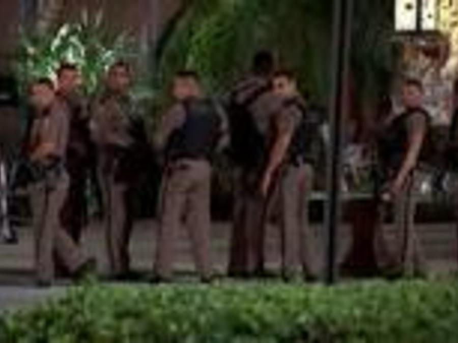 Agentes en el cdentro comercial Dolphin en Miami
