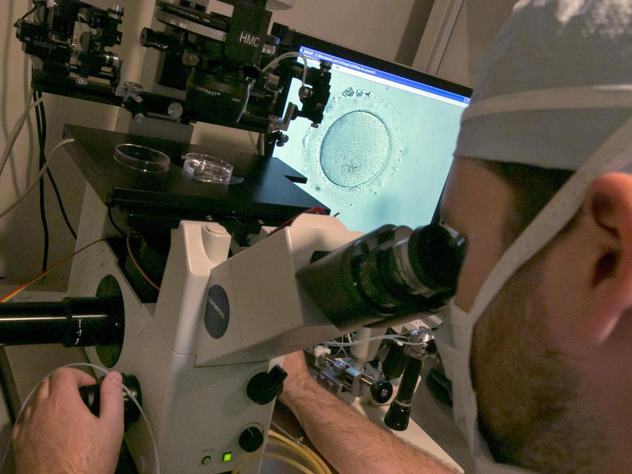 Un doctor revisa un embrión en una clínica de salud reproductiva de Nueva York en 2013.