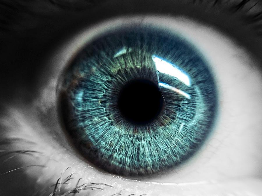 Analiza ojo