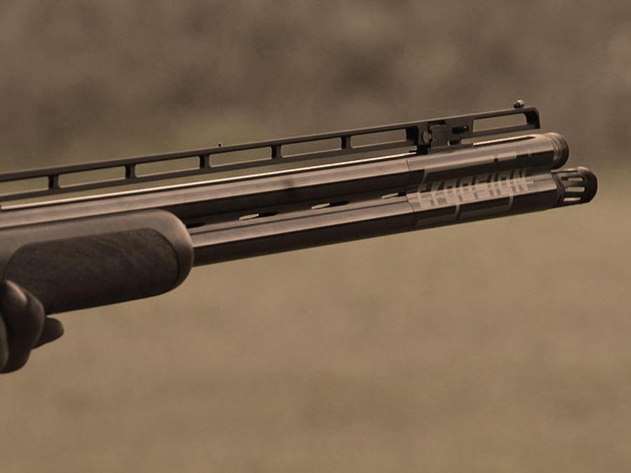 escopeta apuntando