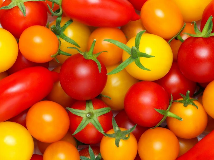 A variety of tomatoes.