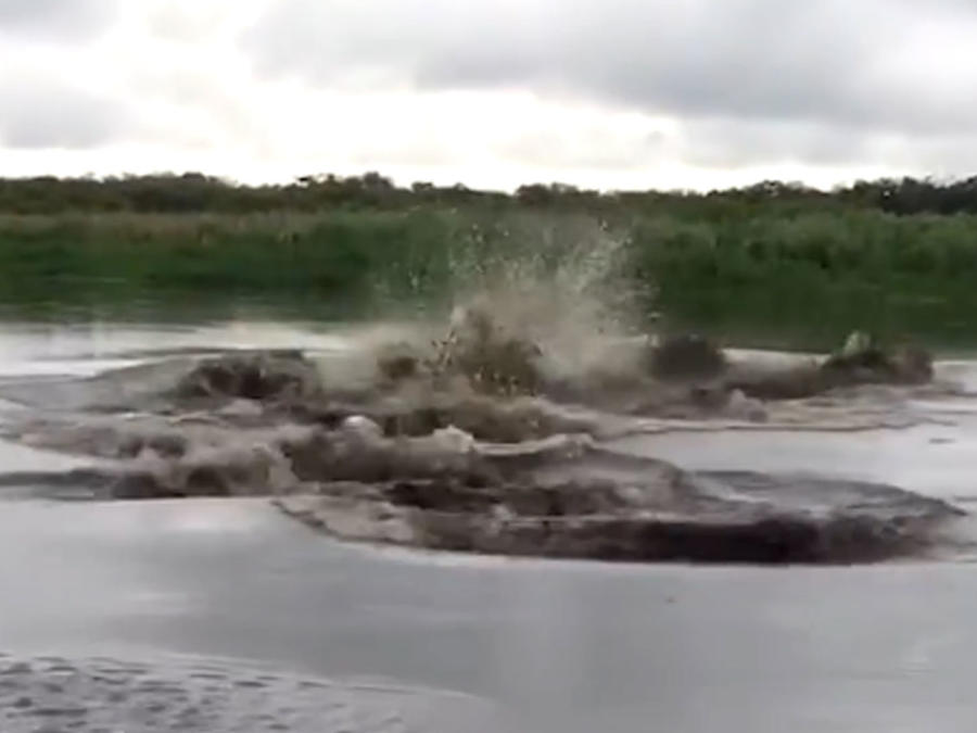 Criatura en río