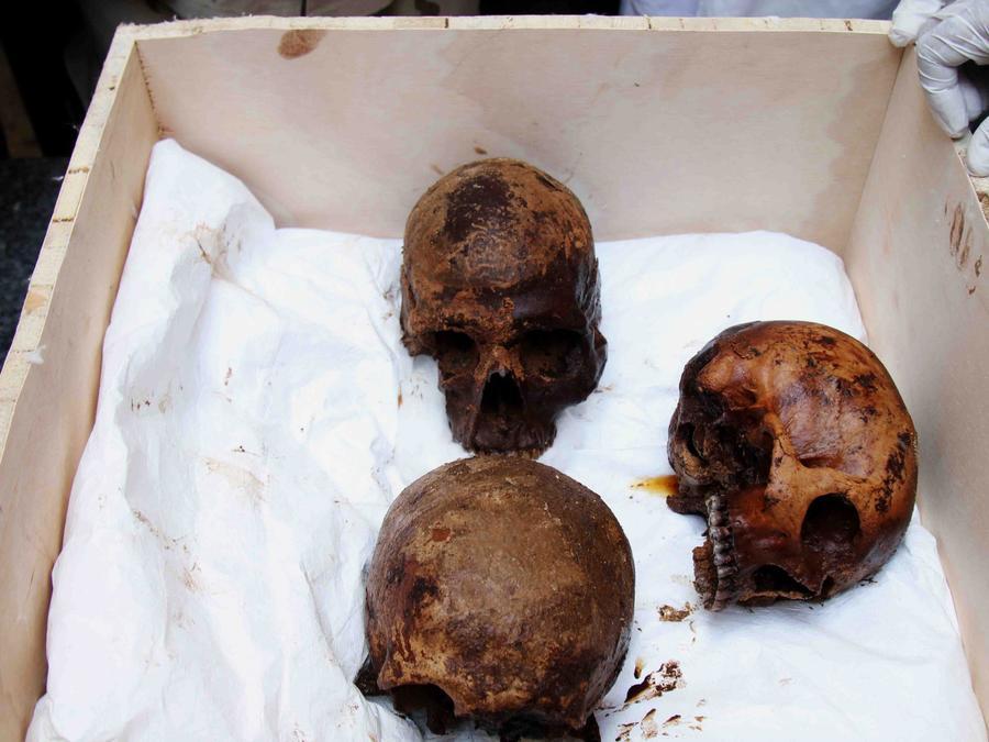 Apertura de un antiguo sarcófago en Alejandría