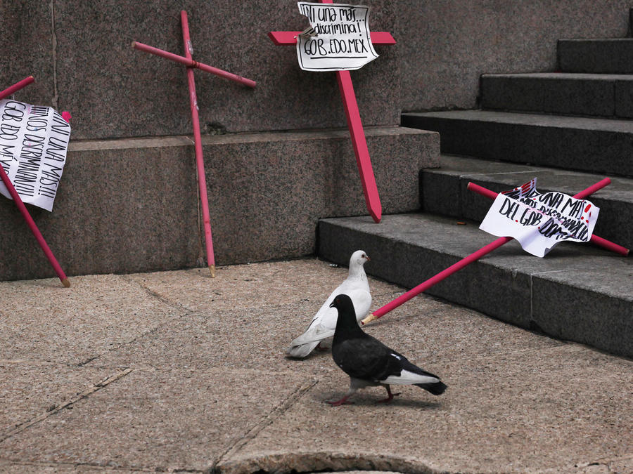 Cruces que representan los feminicidos en México
