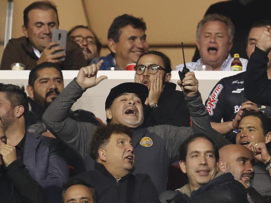 Maradona celebra un gol de su equipo en las gradas del estadio Alfonso Lastras el domingo.