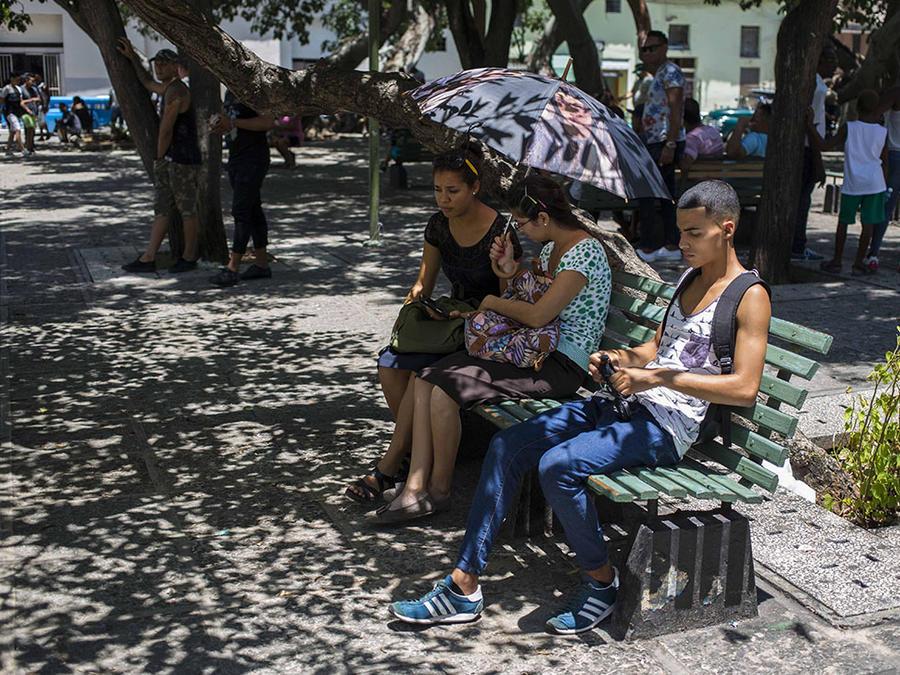 Varias personas se conectan a internet en uno de los puntos wifi que ofrece el gobierno.