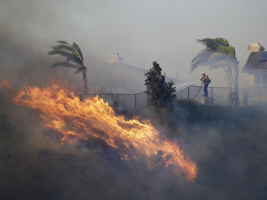 Un bombero rocía agua a un incendio forestal en California