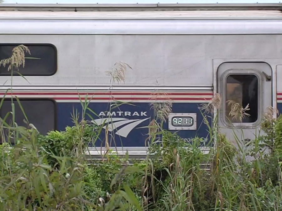 Tren de AMTRAK que colisionó este sábado con un auto en Jupiter, Florida.