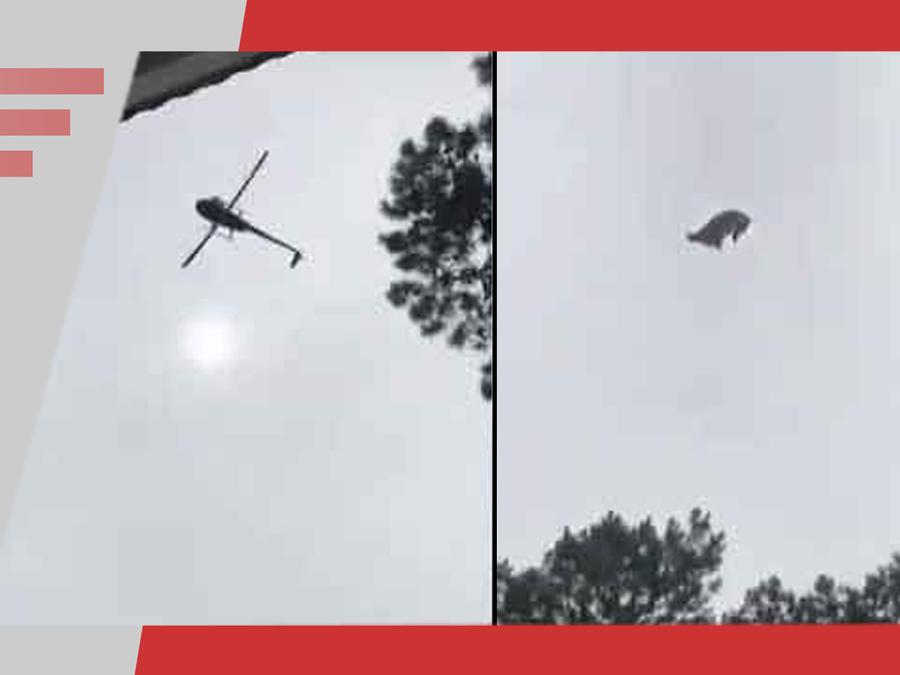 Cerdo lanzado desde helicóptero