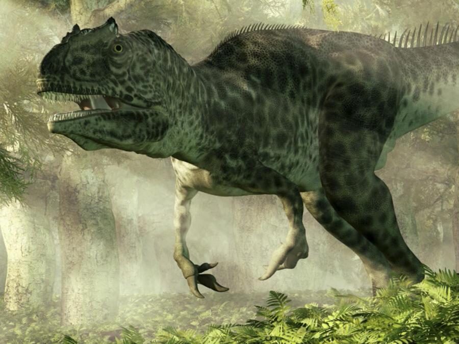 Dinosaurios carroñeros