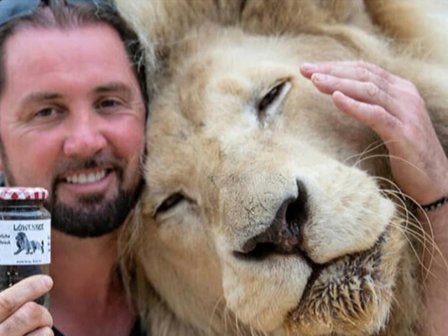 Excremento de leones