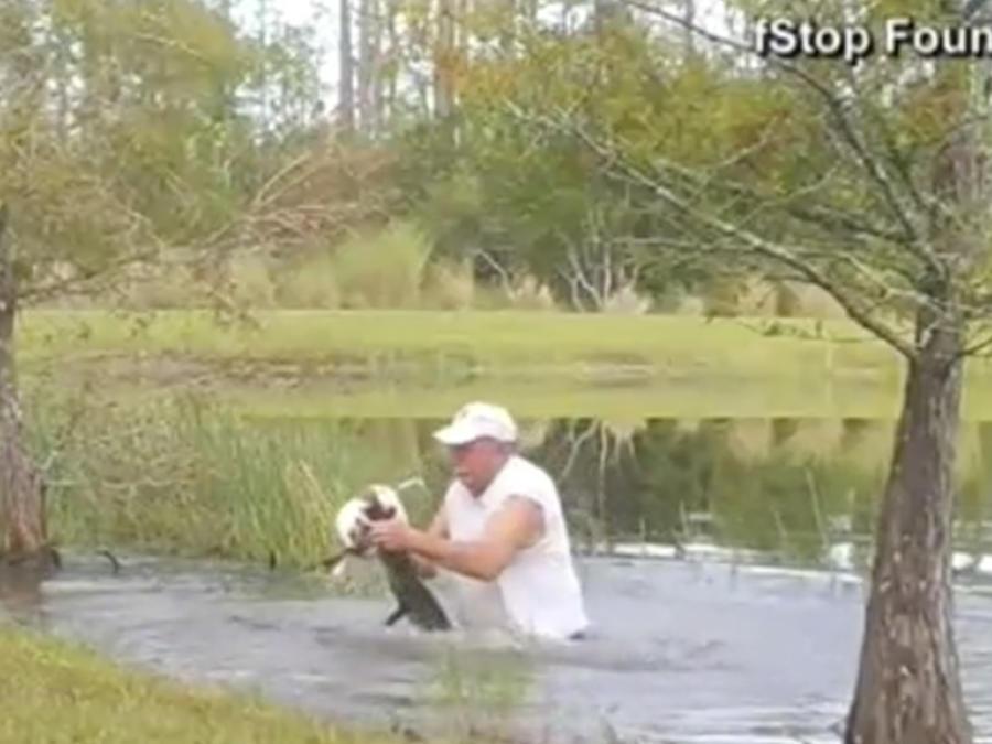 Salva a perro de un cocodrilo
