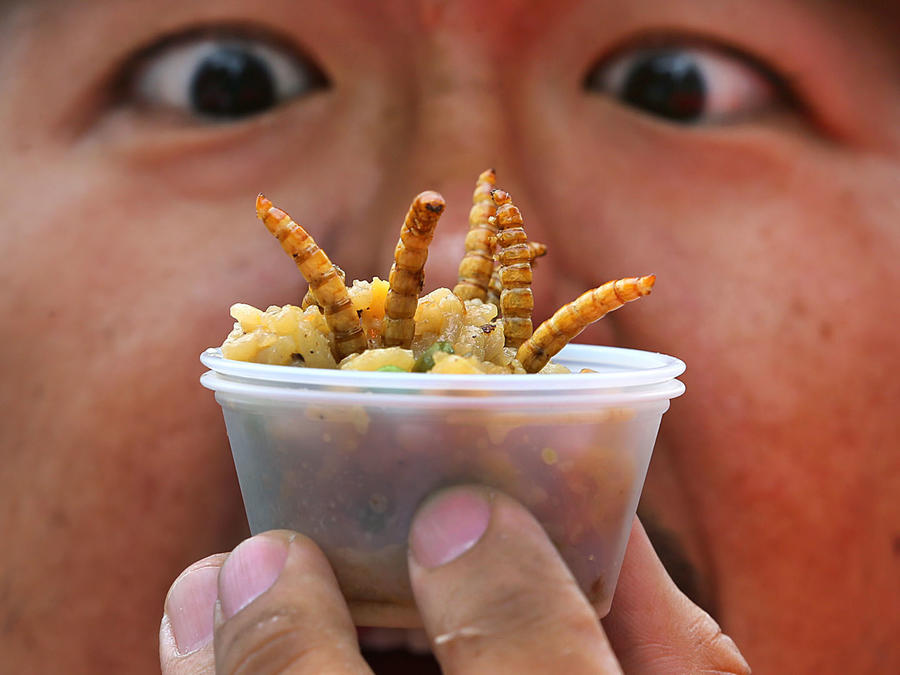 Comer insectos es rechazado por muchos