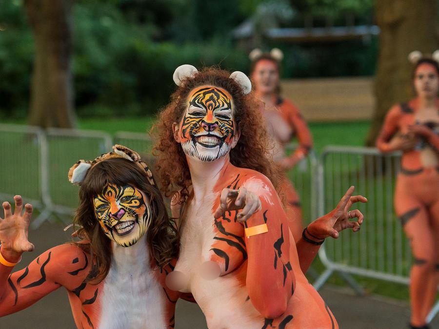 Corrieron desnudos para ayudar a los tigres