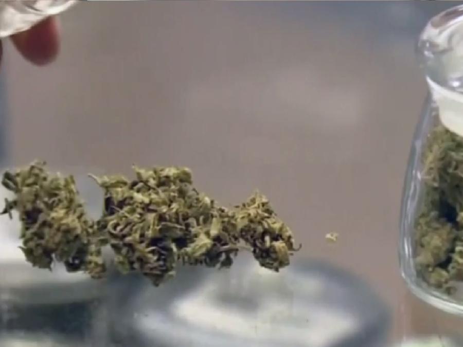 Dispensario de marihuana en una foto de archivo