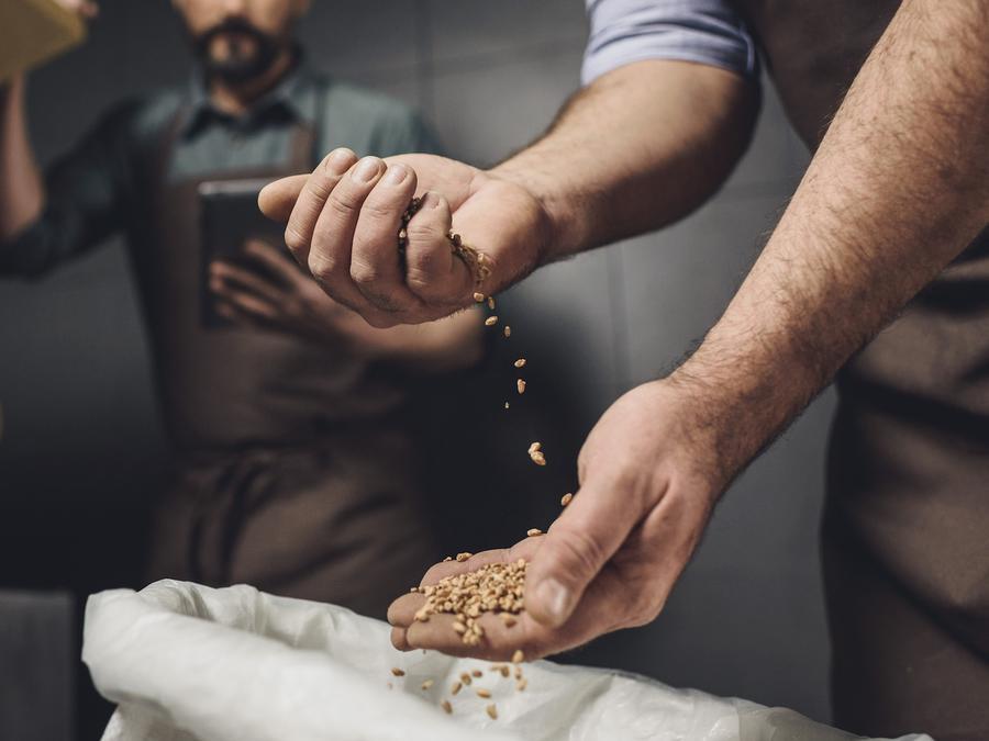 Dos hombres controlando granos