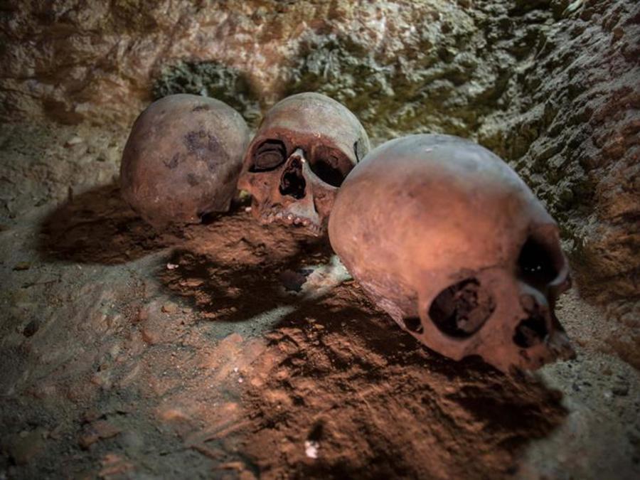Calaveras de sacerdoters halladas en una necrópolis cerca del Nilo