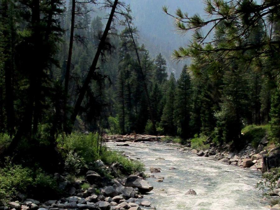 Río South Fork Salmon, Idaho