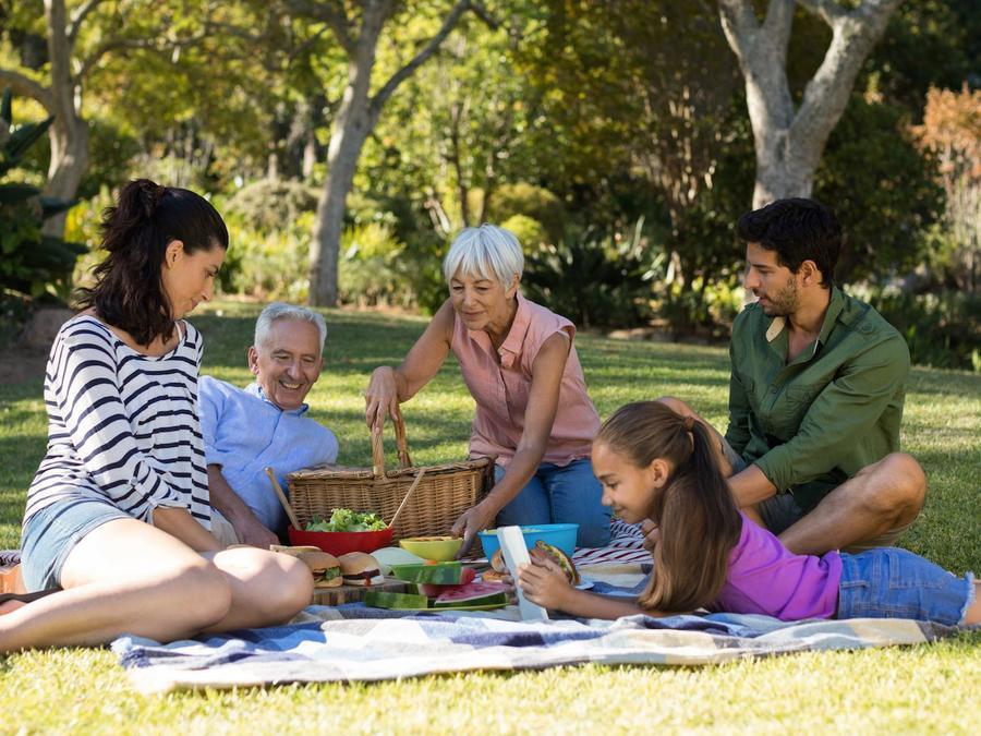 Familia en un picnic al aire libre