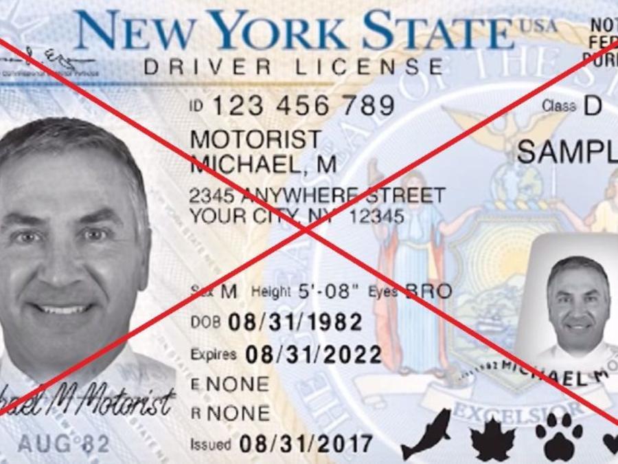 Los indocumentados no pueden aplicar por una tarjeta solamente como identificación.