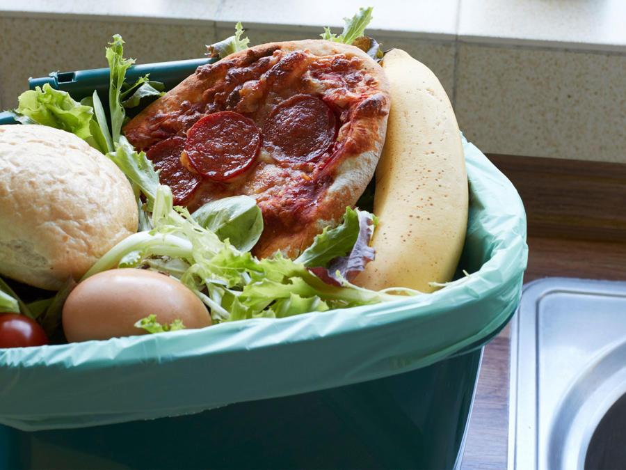 Comida en el bote de la basura