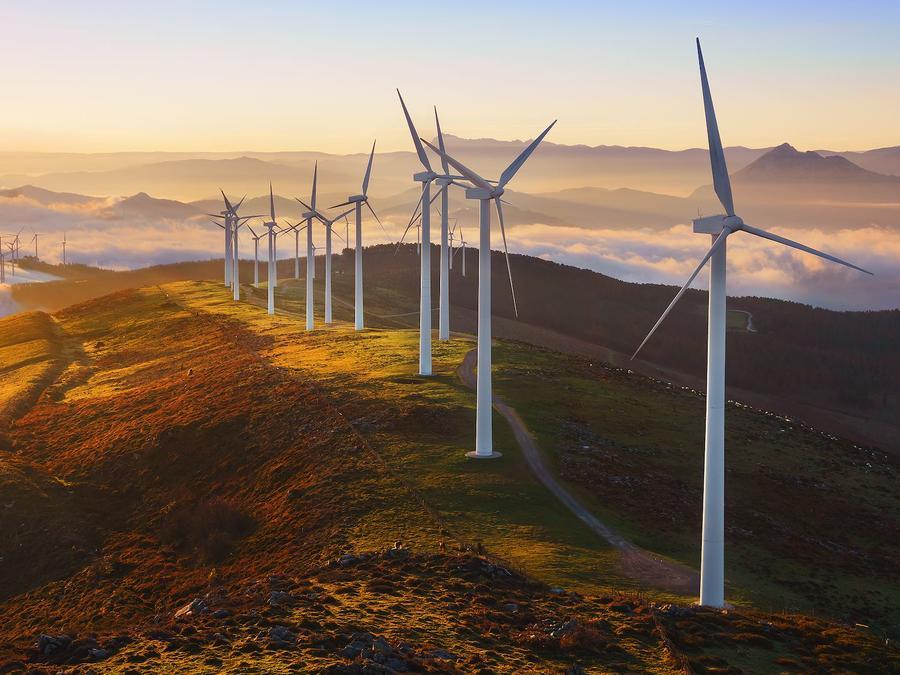 Ranking: los países más ecológicos del mundo