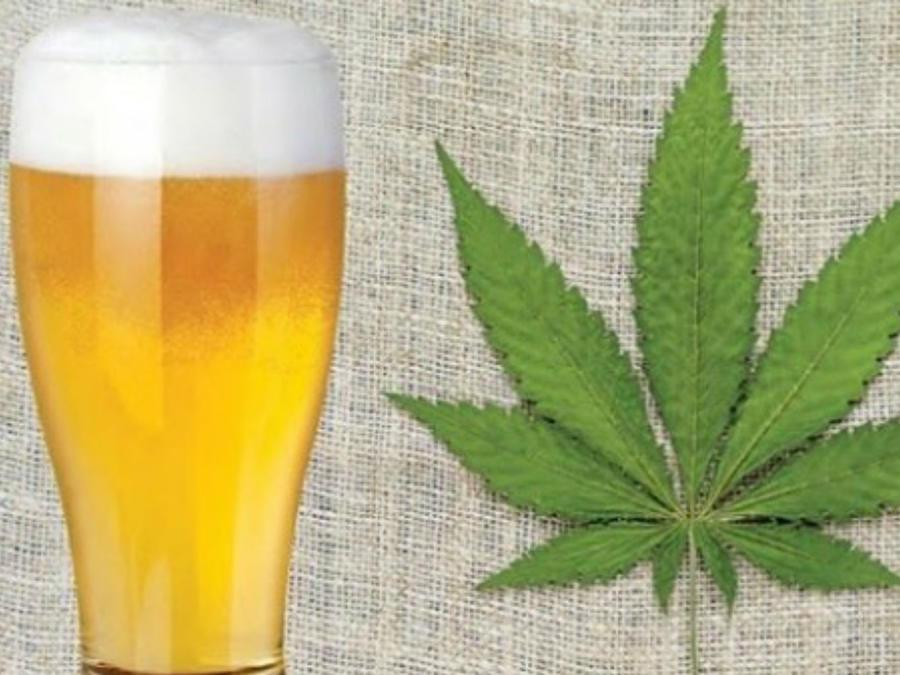 Cerveza de marihuana