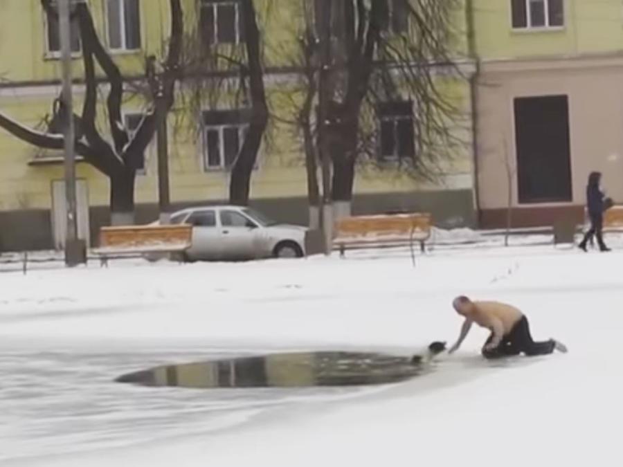 Un perro es rescatado de un lago helado a pesar de morder a su Salvador (VIDEO)