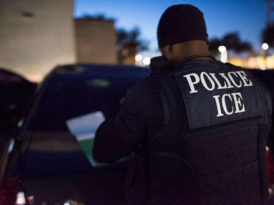 La empresa fue contratada por ICE en junio de 2017
