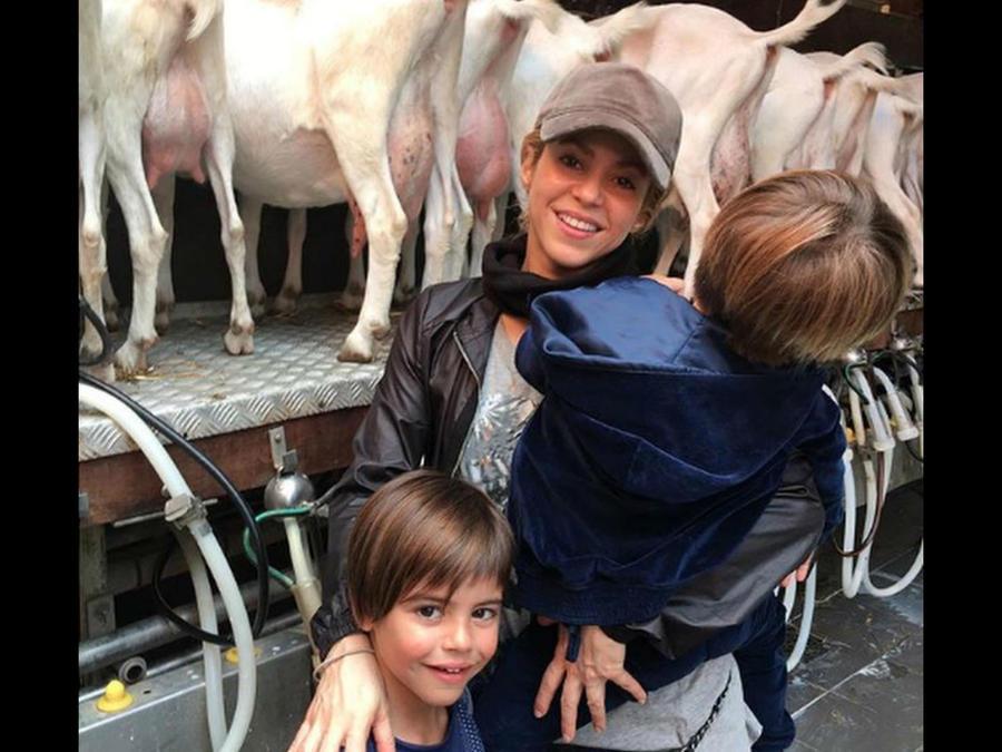 Shakira con sus hijos en la granja