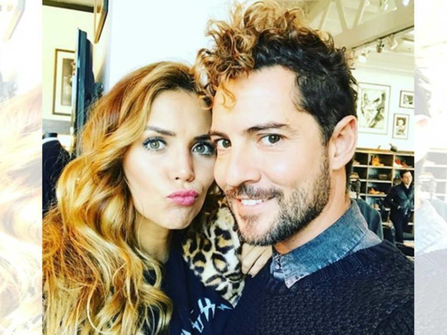 David Bisbal y su esposa