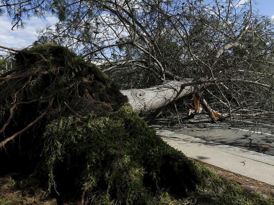 daños tormentas sur california