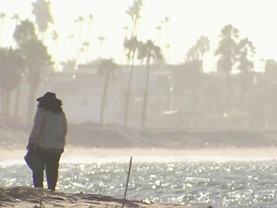 bacterias en playas de california