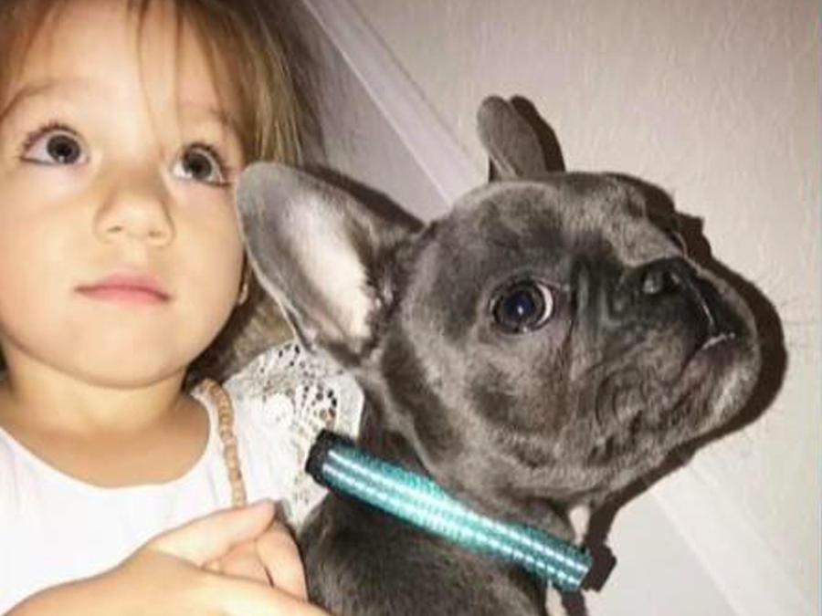 Nuestra princesita Alaia conoció al perrito de James